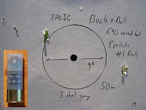 Click image for larger version.  Name:Buck_and_Ball_690_Ball_and_1_buck_50m_lowres.jpg Views:34 Size:58.2 KB ID:230903