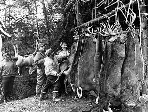 Click image for larger version.  Name:vintage deer camp.jpg Views:56 Size:141.2 KB ID:228667