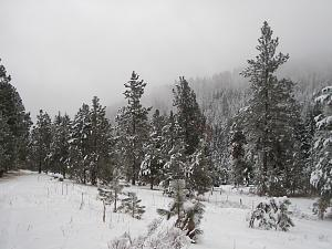 Click image for larger version.  Name:hiking out.jpg Views:21 Size:73.4 KB ID:209592